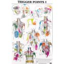 Charte Trigger Points 1& 2