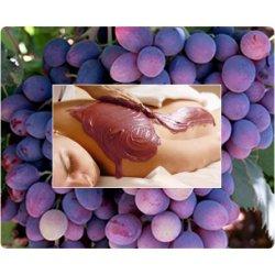 Algaes & grapes - Body wrap gel ORE Body care