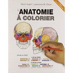 Anatomie à Colorier